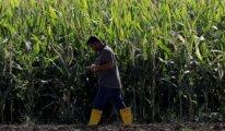 Çiftçiler isyan etti