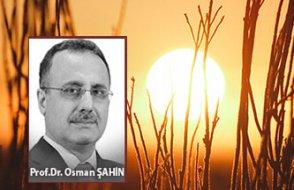 [Prof. Dr. Osman Şahin yazdı] Mikro Planda temsillerin ve Krizde küçülmenin faydaları