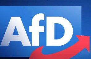Alman eyaletinden çok önemli AfD kararı