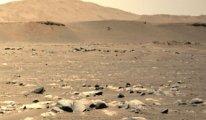 Dünya'dan Mars'a mikrop mu taşıdık?