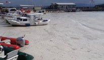 Marmara Denizi'nden sonra Tuz Gölü'nden de kötü haber