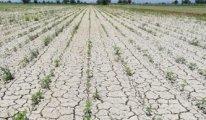 Türkiye'nin yüzde 60'ının su açığı var, artık kuraklık realite haline geldi