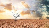 Türkiye'nin yarısı olağanüstü kuraklık yaşıyor