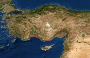 Türkiye'deki yangınlar NASA haritasına da yansıdı