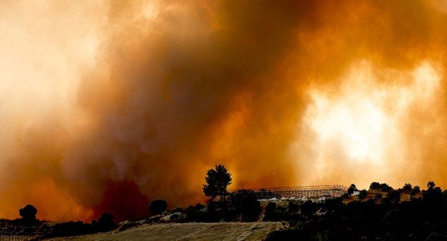 Muğla'nın 7 ilçesinde 35 binden fazla kişi tahliye edildi
