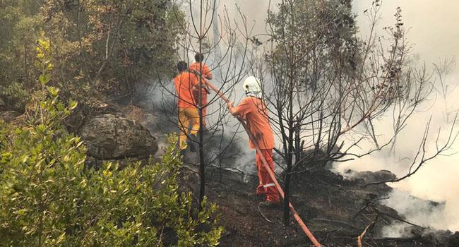 Türkiye'de orman yangınlarında can kaybı 9'a yükseldi