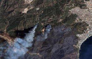 İşte Türkiye'yi saran yangınlarında yok olan orman miktarı