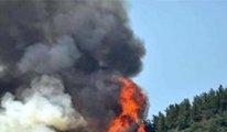 Sayıştay'dan 'orman yangınları' raporu