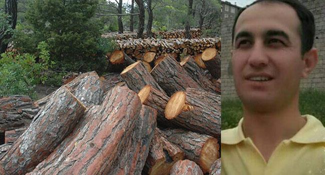 KHK'lı öğretmen çalıştığı ormanda üzerine ağaç düşmesi sonucu hayatını kaybetti