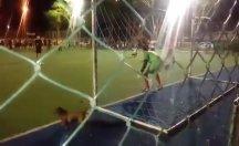 Bir köpek halı sahada penaltıyı kurtardı