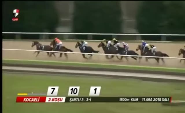 Jokeyini sırtından atan at, yarışı en önde bitirdi