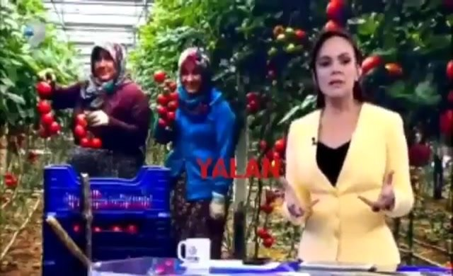 Kanal D Haber'den tanzim satış çarpıtması
