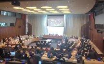 BM Güvenlik Konseyi'nin 55 yıldır kapalı olan perdelerini açıldı