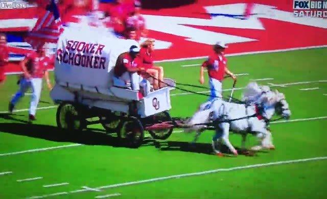 Maçın ortasında at arabası devrildi