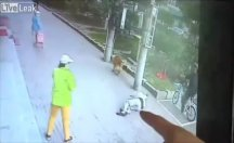Başına komşusunun kedisi düştü